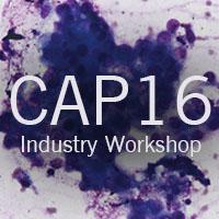 cap16 industry workshop